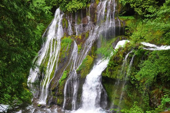 Carson Ridge Luxury Cabins : Nearby falls