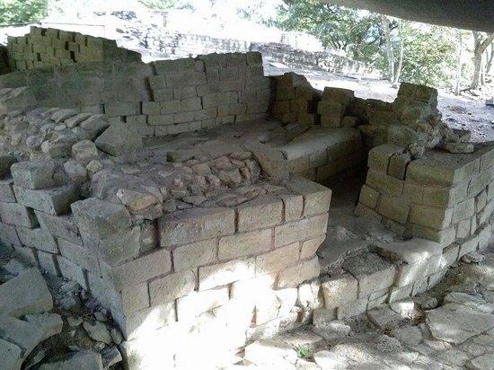 Clarion Copan Ruinas: Rastrojon