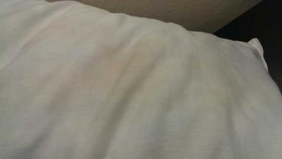 Hampton Inn Suites Valdosta Conference Center: Pillows