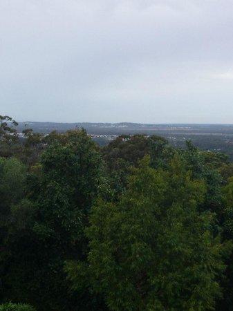 Buderim Tavern: the view