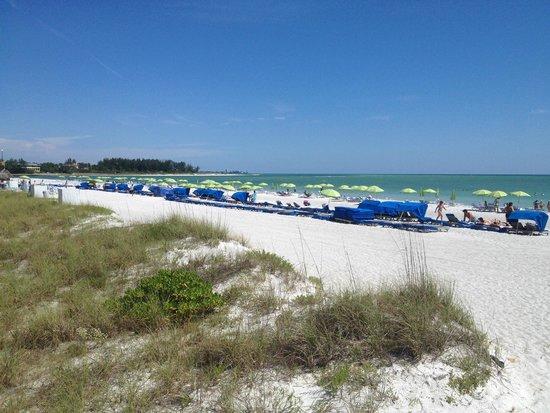 Resort at Longboat Key Club : :)