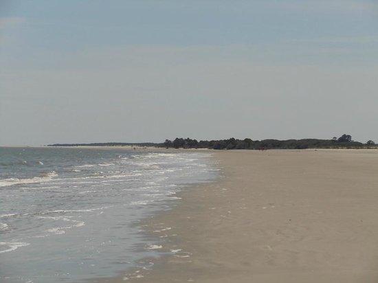 Blackbeard Island National Wildlife Refuge: Beautifu Beach