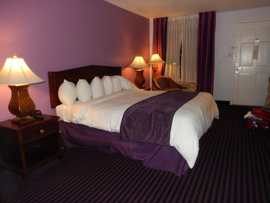 Quality Inn & Suites Maison St. Charles : unique colors