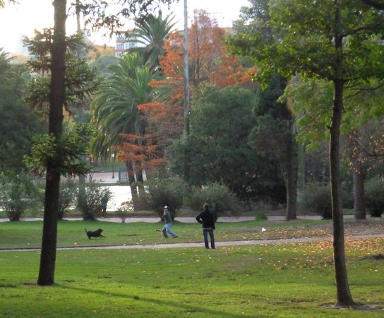 Parque Rodo: 4