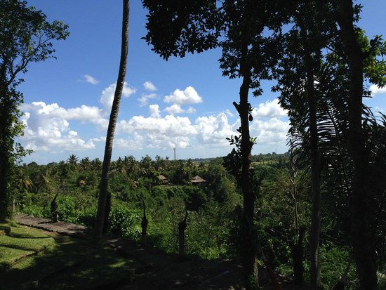 Bambu Indah: THE VIEW