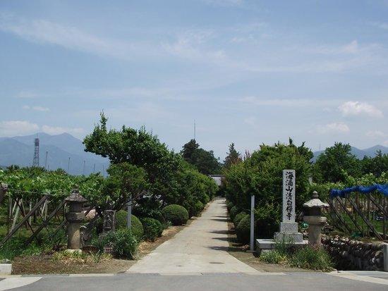Seihaku-ji Temple : 参  道