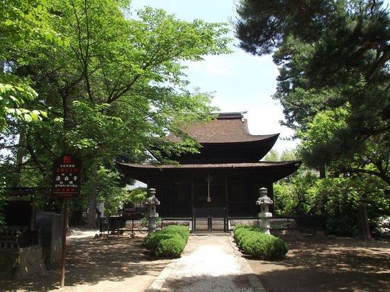 Seihaku-ji Temple : 仏  殿