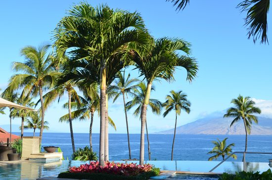 Four Seasons Resort Maui at Wailea: The Serenity Pool, our most favorite spot