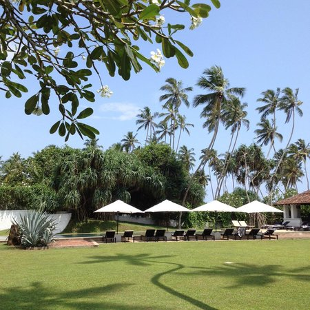 Paradise Road The Villa Bentota : Hotel grounds