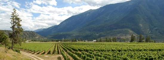 Fort Berens Estate Winery: Spectacular scenery in Lillooet