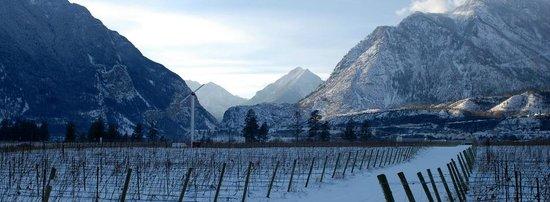 Fort Berens Estate Winery : Winter landscape in Lillooet