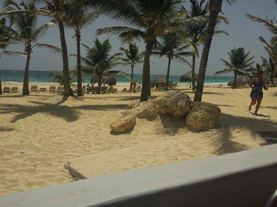 Hard Rock Hotel & Casino Punta Cana : The beach