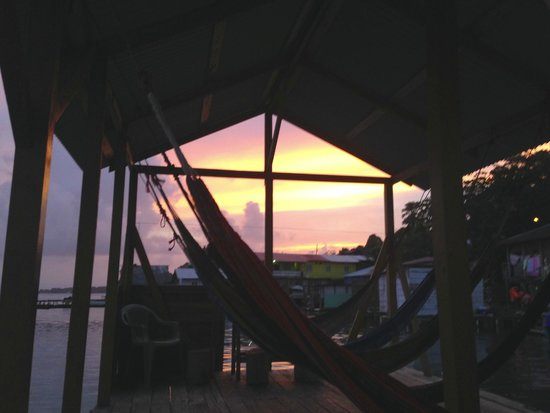 TioTomsGuesthouse: view from Hammock