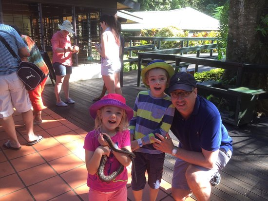 Kula Wild Adventure Park : The kids loved holding a local snake. They are surprisingly friendly and very happy with heavy h