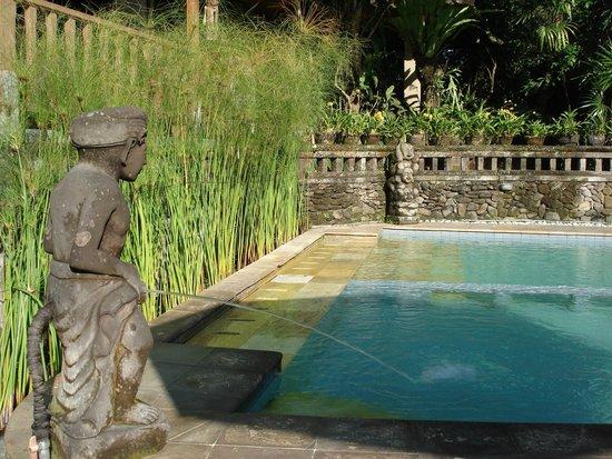 Ketut's Place Swimming Pool