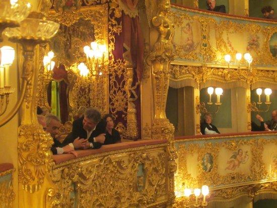 "Teatro La Fenice: Teatro ""La Fenice"" interior taken from our box"