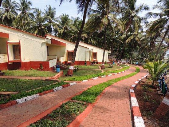 MTDC Beach Resort Ganapatipule: Green Pathways