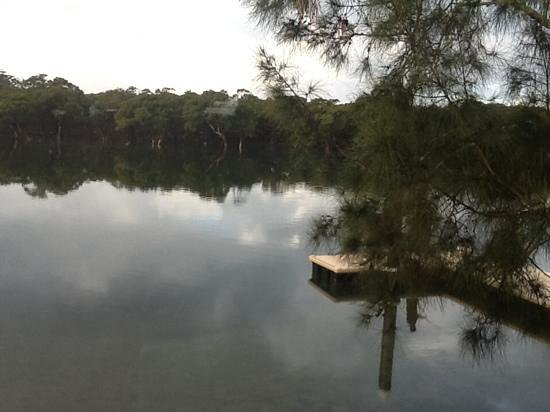 Jervis Bay Holiday Park : view from our balcony (no 15)