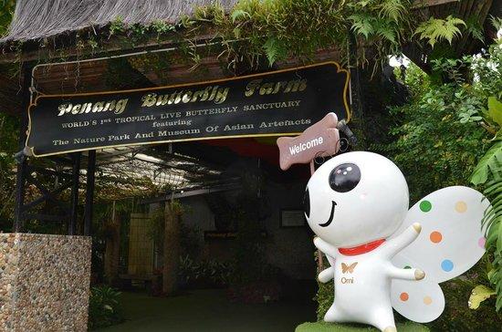 Entopia: @ Penang Butterfly Farm