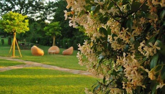 Il giardino dell'Hotel Certaldo - Hotel Certaldo's garden