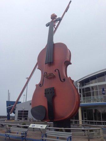 Cambridge Suites - Sydney: Big fiddle
