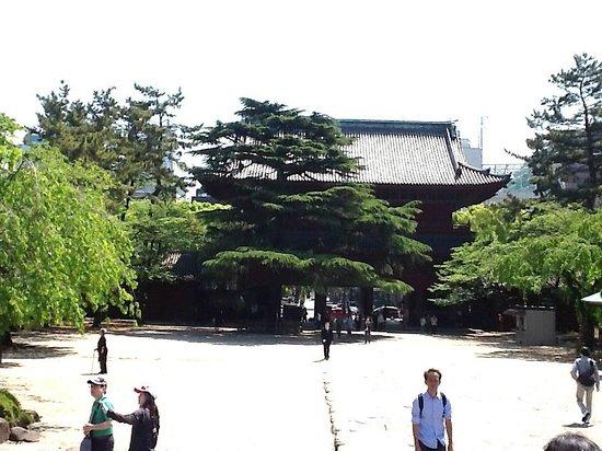 Zojoji Temple : Sangedatsu (portão principal)