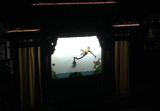Shichahai Shadow Art Performance Hotel: Show in Progress, good heron attacks bad turtle