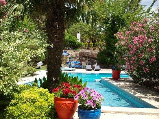 Bakkhos Guesthouse: het zwembad