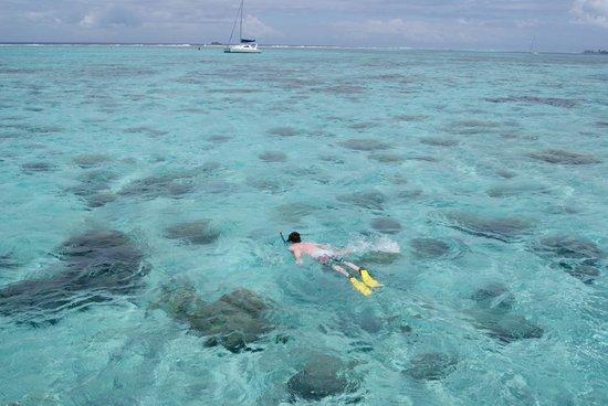 Sofitel Moorea Ia Ora Beach Resort : Just off our deck