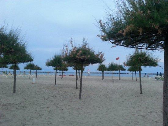 Color Metropolitan Village : Spiaggia unica! Le tamerici a Valverde di Cesenatico