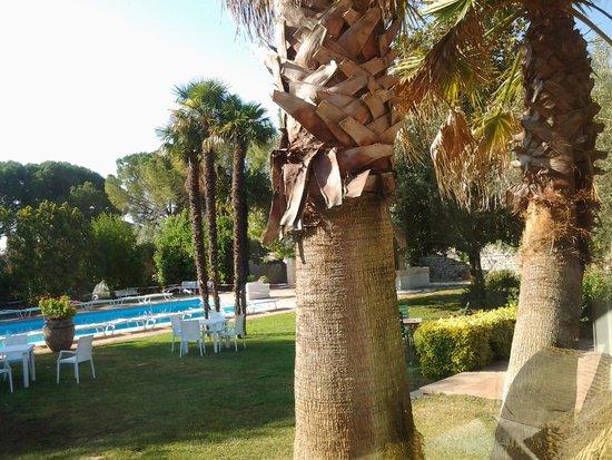 Mothuq Garden - House: Angolo del parco!