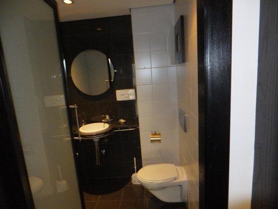 Sheraton Tirana Hotel: Common Toilet with washbasin