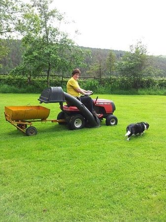 Hafod Grange Bed & Breakfast: Gail and Teenie busy in garden