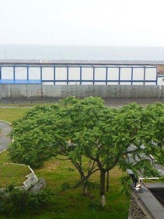 Azimut Hotel Vladivostok: 'Ocean' view of containers and ovegrown garden
