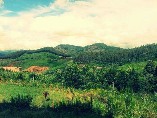 Accord Highland Hotel Ooty: Hotel & grounds