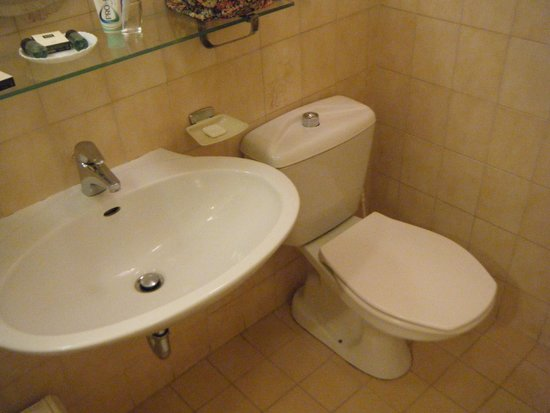 Danubius Hotel Gellert: This bathroom (305) smelled and had insects coming from the sewer