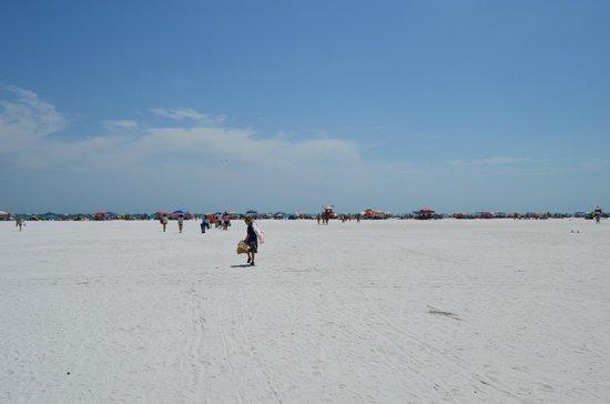 Siesta Beach : Siesta Key - La grande spiaggia
