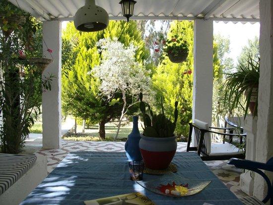 Bakkhos Guesthouse: Terrace outside family room