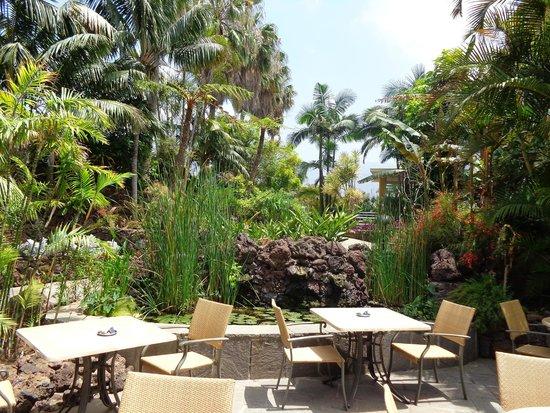 Hotel Tigaiga: H Tigaiga -  breakfast terrace