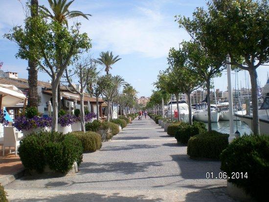 Hotel More: Port of Alucudia