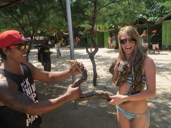 Turtle Conservation and Education Center: Snake Handling