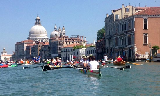 Venice Certosa Hotel : Certosa is well placed for the Vogalonga