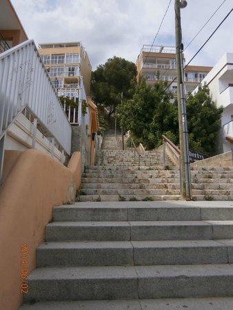 """Club Santa Ponsa : Une partie des """"envolées"""" des 130 marches (près de 15 étages"""