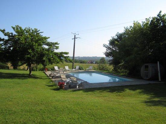 Hôtel Laminak : La piscine