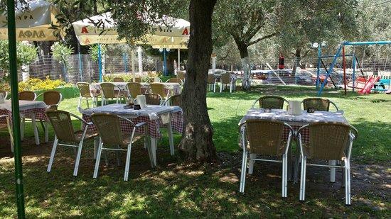 Taverna Maria: Bellissimo giardino.