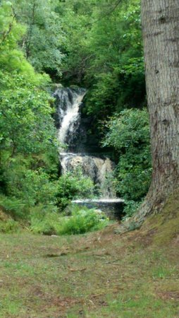 The Linn Falls: Junr 2014