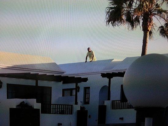 Plaza Azul: rooftop again tam