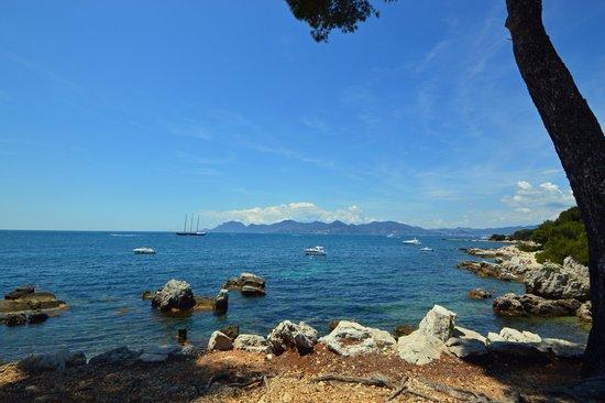 Îles de Lérins : Vue sur la baie de Cannes