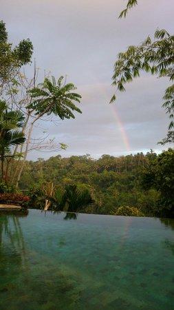 The Royal Pita Maha: 早起きしたら、虹が出てました!