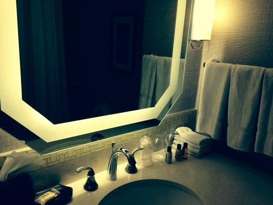 Sheraton New Orleans Hotel: BATHROOM